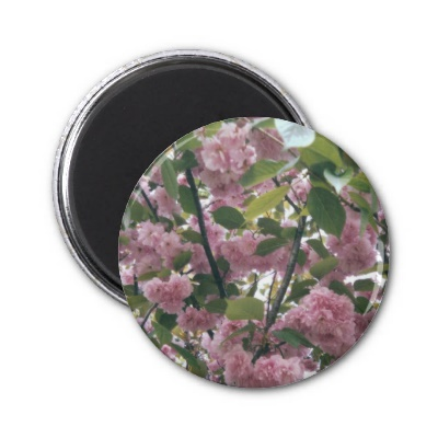 vertical_pink_flowers_001_magnet