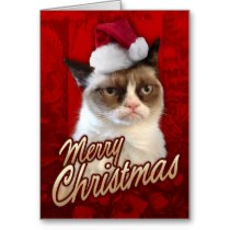 merry_christmas_grumpy_cat_greeting_cards-r27c69b2fca374af483c78740c2b9c345_xvuat_8byvr_210