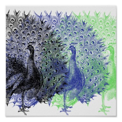 peacock_poster