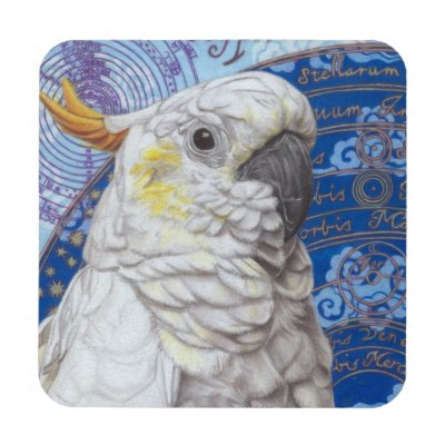 cockatoo_art_coasters_set_of_6